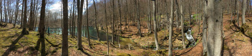 Místo v lese, kde pramení horský potůček