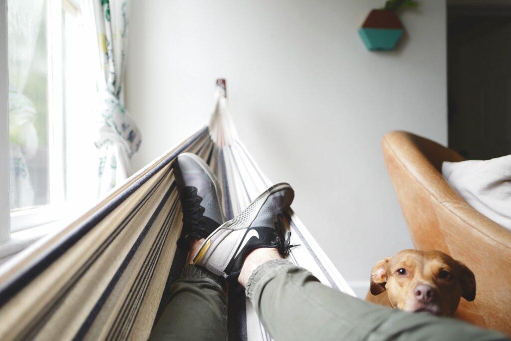 odpočinek v houpací síti, společnost dělá pes